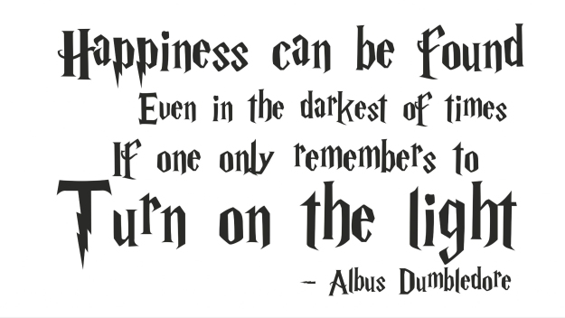 Albus Dumbledore Happiness Quote