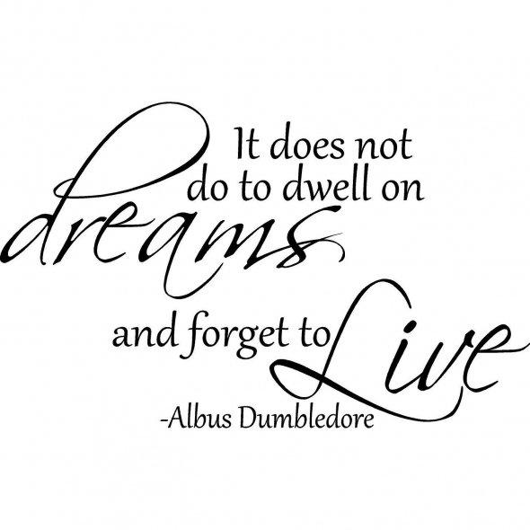 Dwelling on dreams (1)