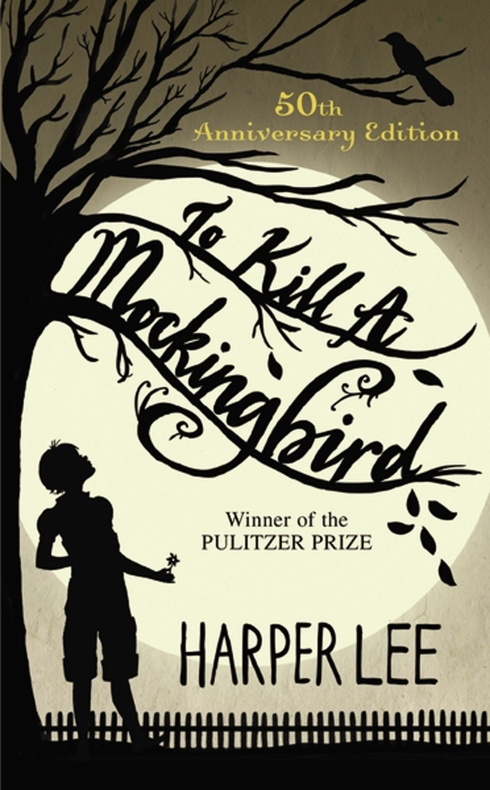 the series of learning experiences in to kill a mockingbird Books and booze: 'to kill a mockingbird' by harper photo illustration of 'to kill a mockingbird' by harper lee scout's experiences in the novel lead her.
