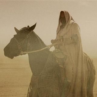 final frontier sybok unicorn horse