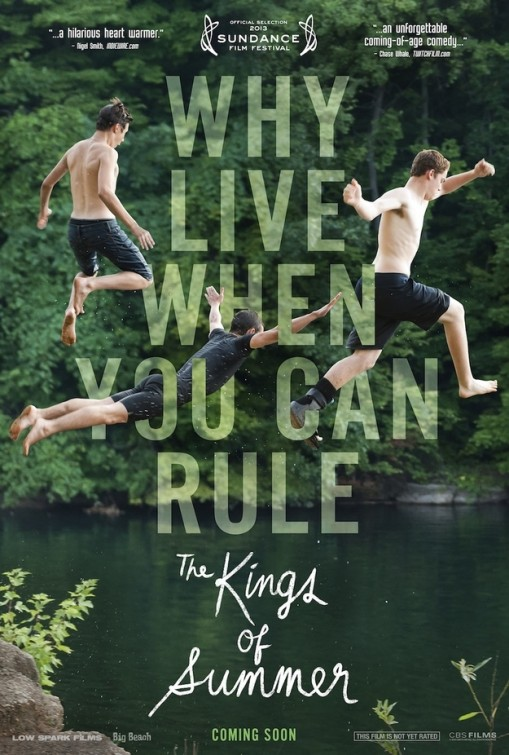 kings of summer poster